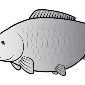 ponty silver matrica